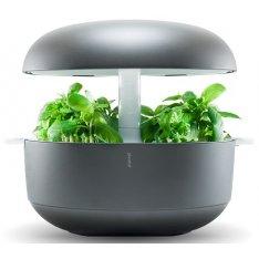 Inteligentny ogródek Plantui 6