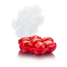 Pojemnik na pomidorki koktajlowe